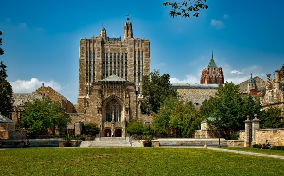 Yale pic